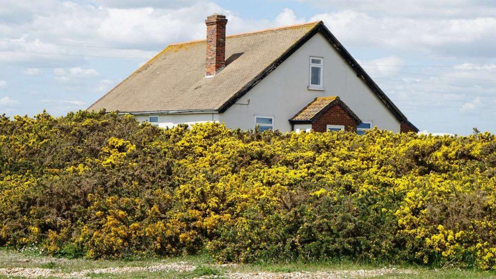hus med skorsten vid havet